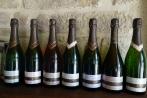 Clairettes et crémants (carton de 6 bouteilles)